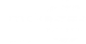 MS3 Partner